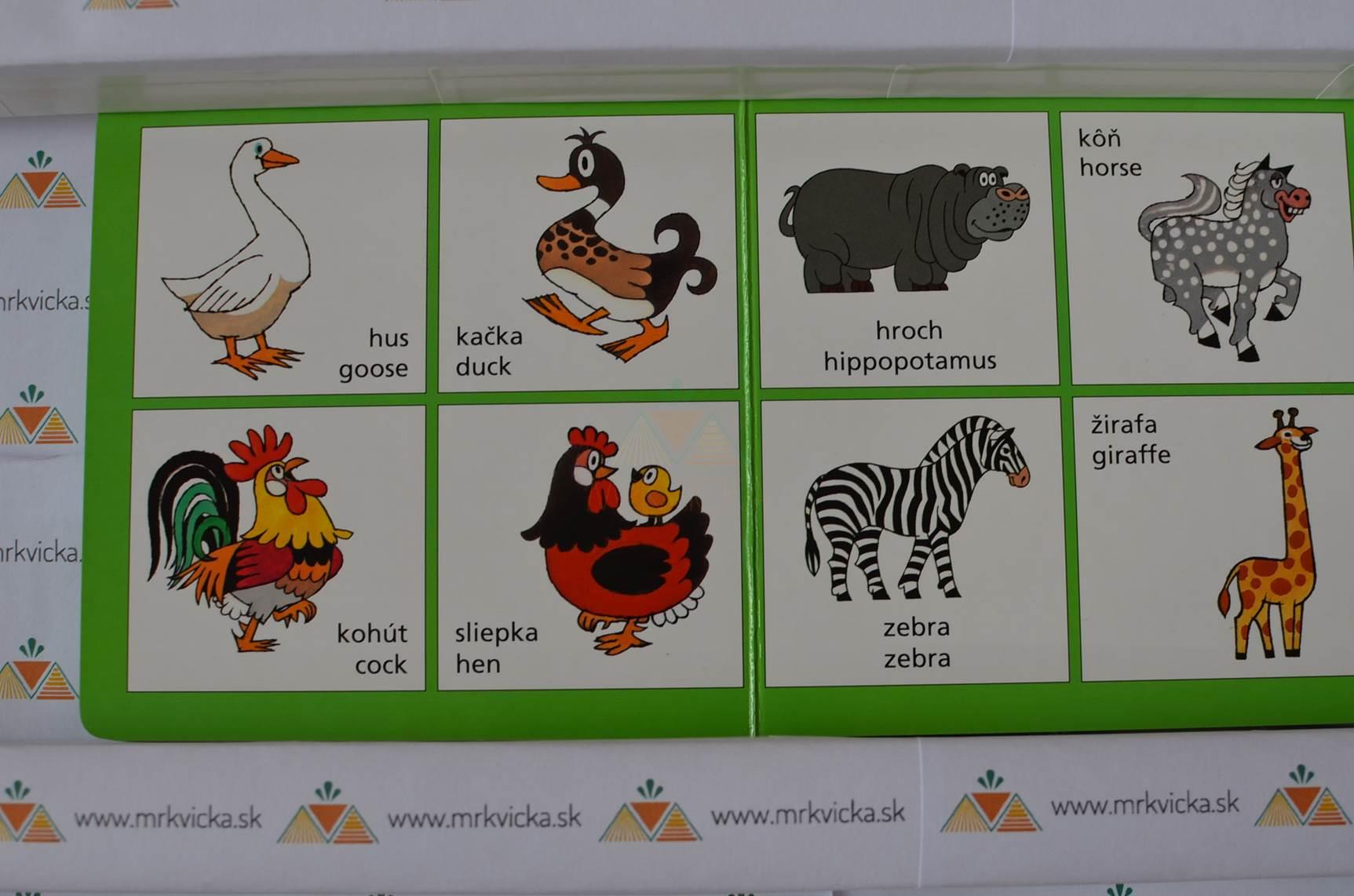 Angličtina pre deti - Krtko a kamaráti + pexeso + slovníček