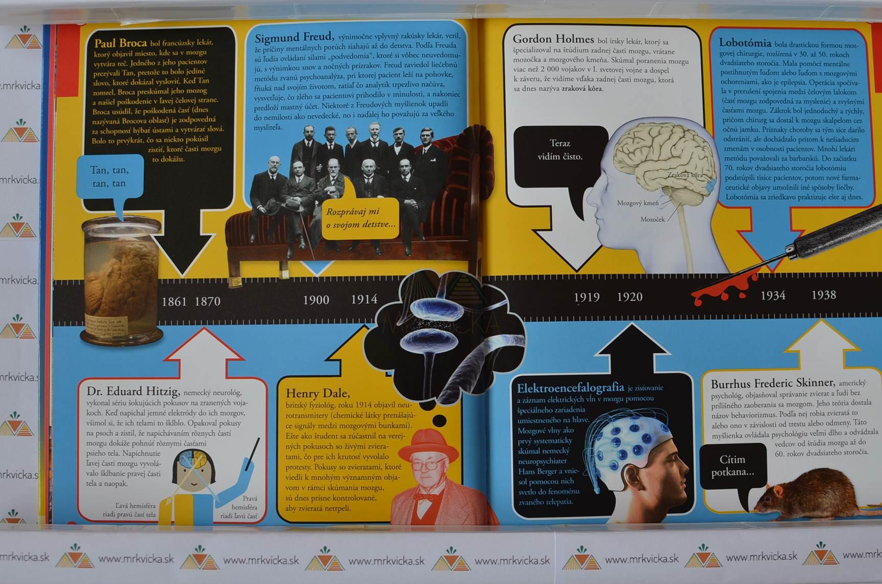 Čo sa deje v mojej hlave (Ako funguje tvoj mozog a prečo robíš to, čo robíš)