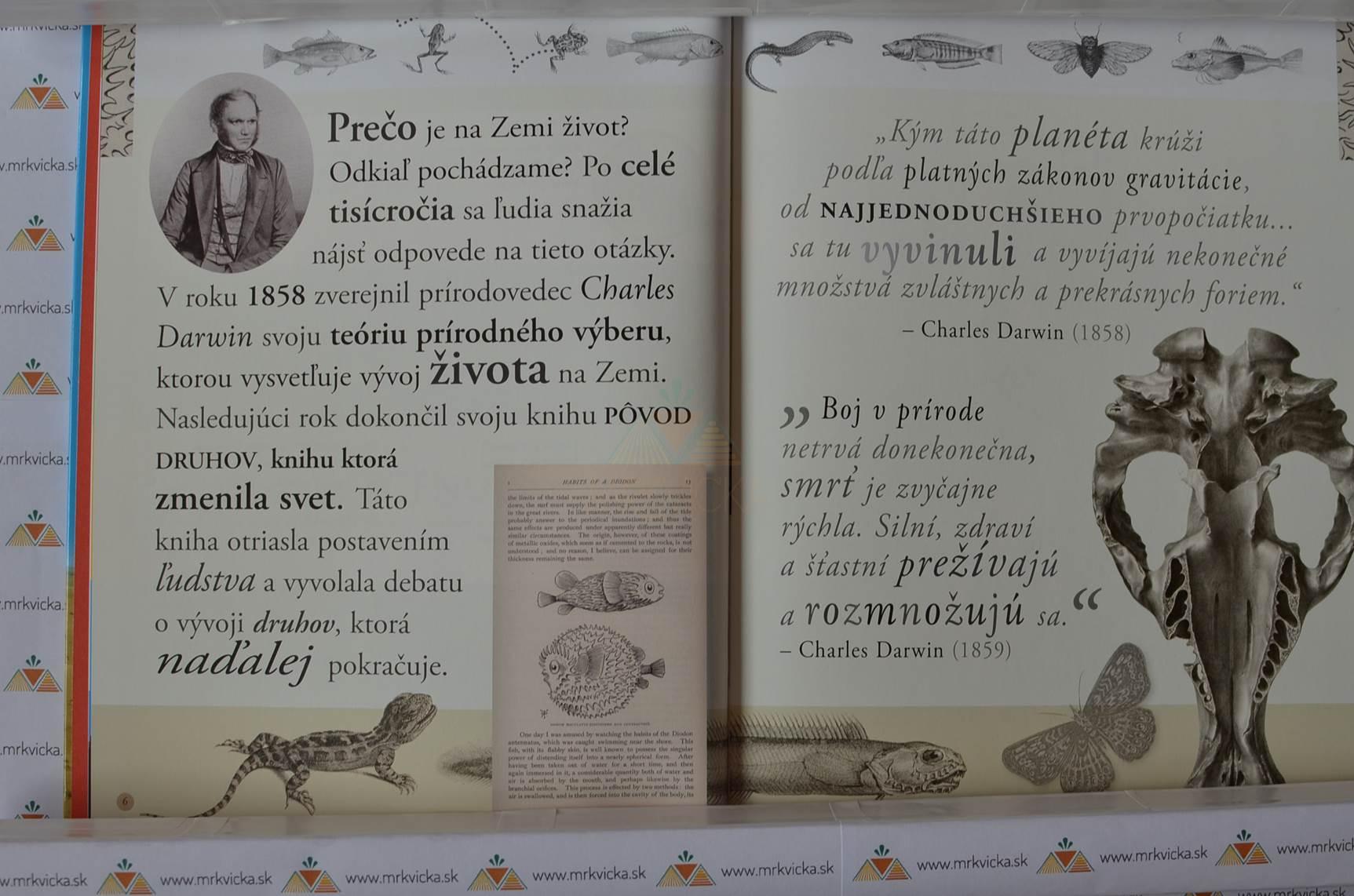 Je evolúcia revolúcia - od Darwina k DNA