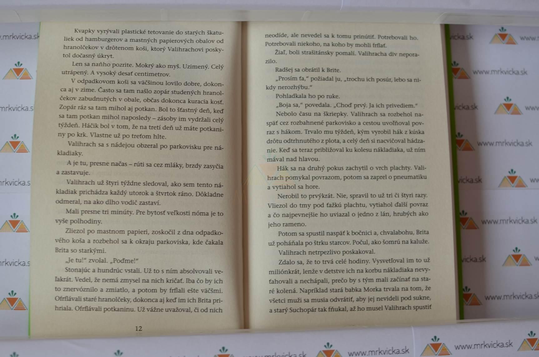 Kniha Nómov 1 – Koniec sveta v hypermarkete