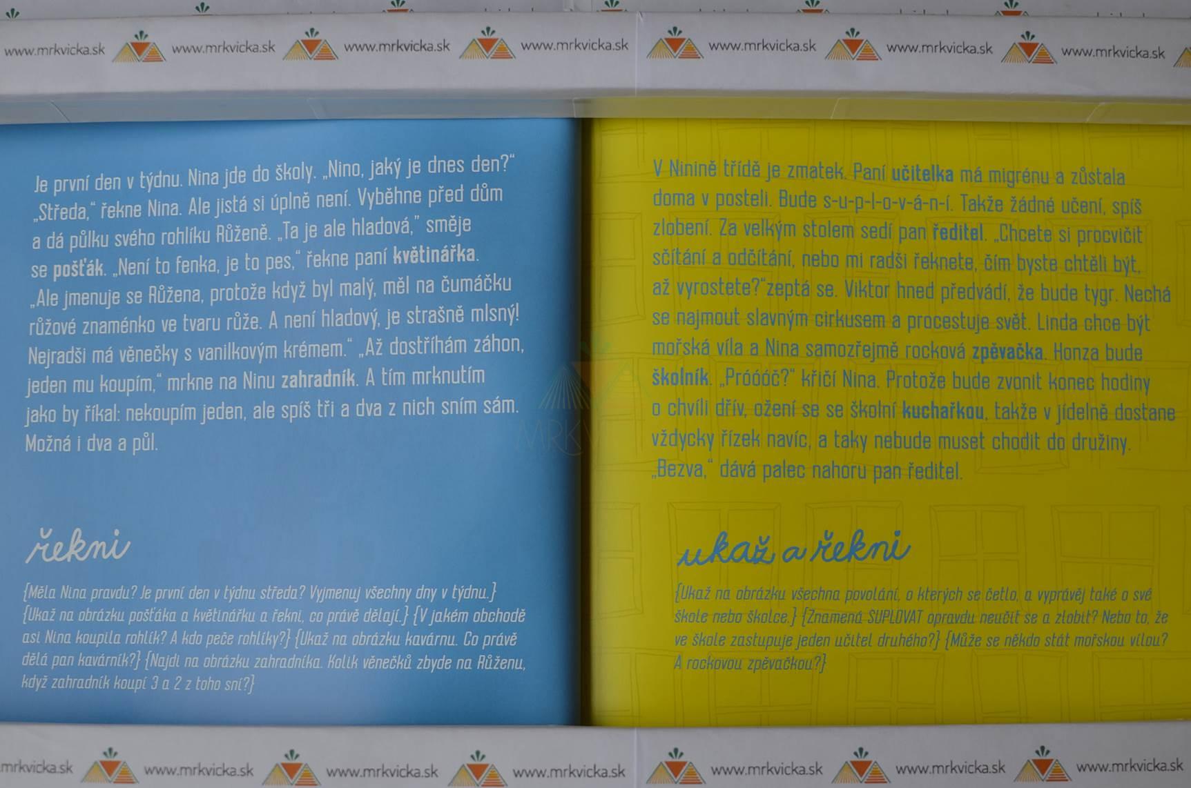 Malá encyklopedie povolání – Nina chce býr rocková zpěvačka