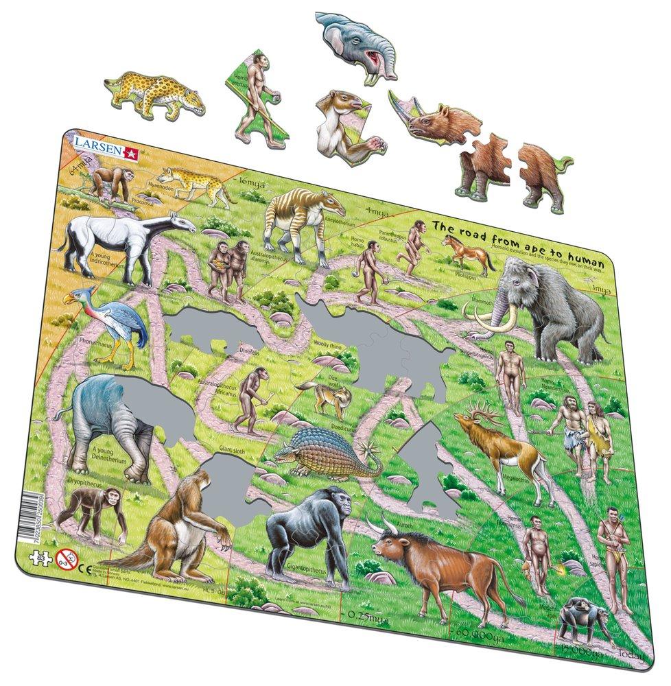 Dejepis – Cesta od opice k človeku, vývoj homo sapiens – Náučné obrázkové puzzle