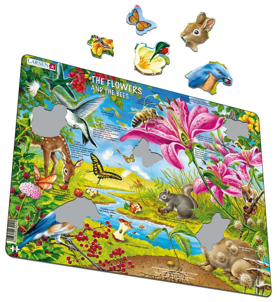 Prírodopis – Semená rastlín, kolobeh semien v prírode, zvieratá a rastliny na lúke – Náučné obrázkové puzzle