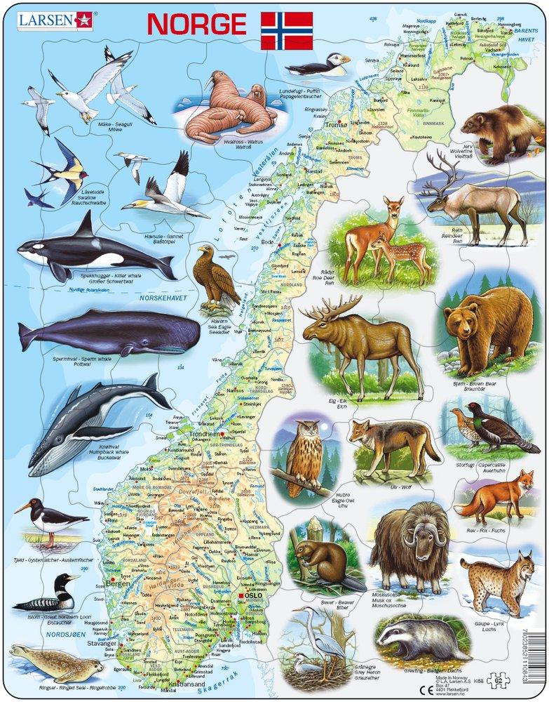Mapy – Nórsko, fyzická všeobecno zemepisná mapa so zvieratami – Zemepis, zemepisné puzzle