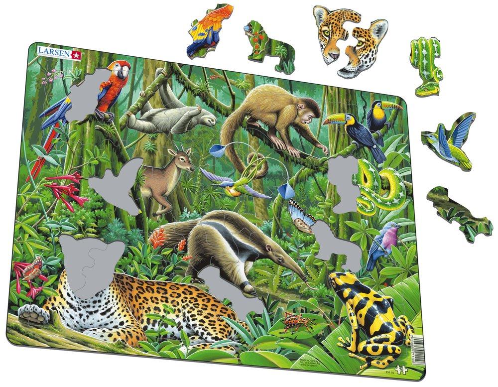 Zvieratá exotické – Juhoamerická džungľa, tropický dažďový prales, leopard, leňochod, mravčiar – Obrázkové puzzle