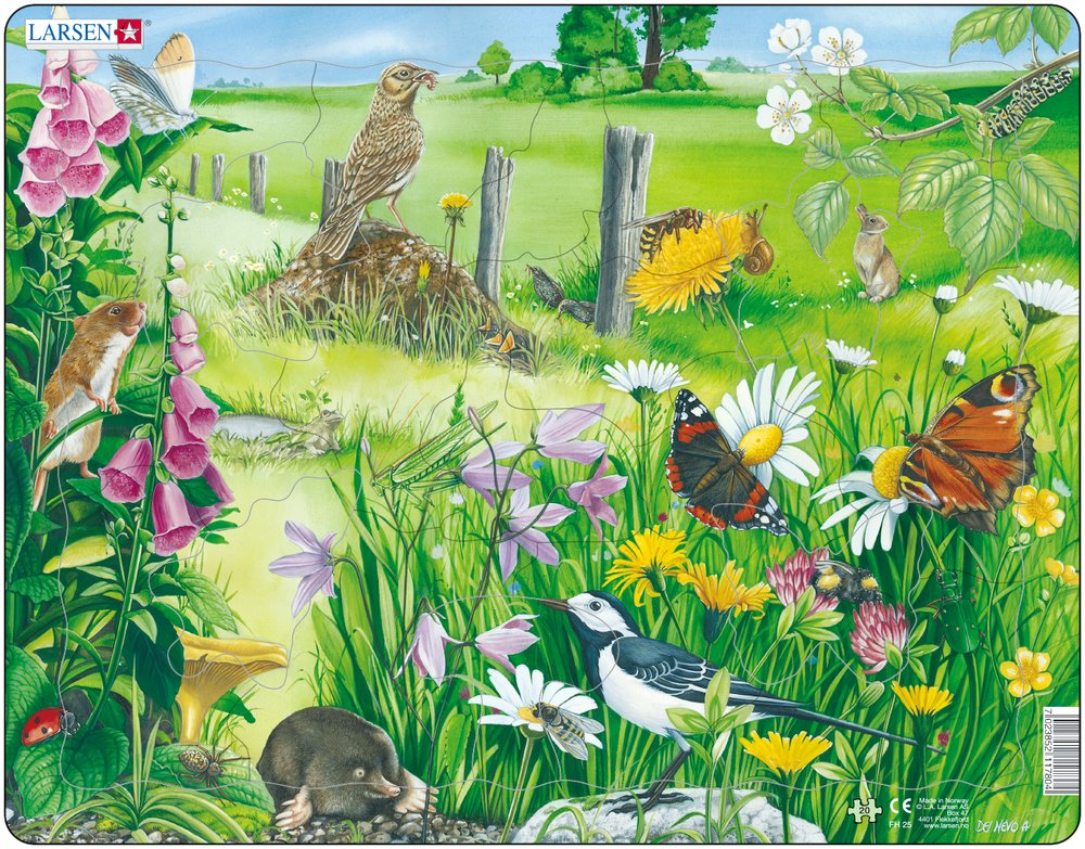Zvieratá lúčne – Na lúke, v tráve, krtko, myška, straka, drozd, škorec, motýle, zajac – Obrázkové puzzle