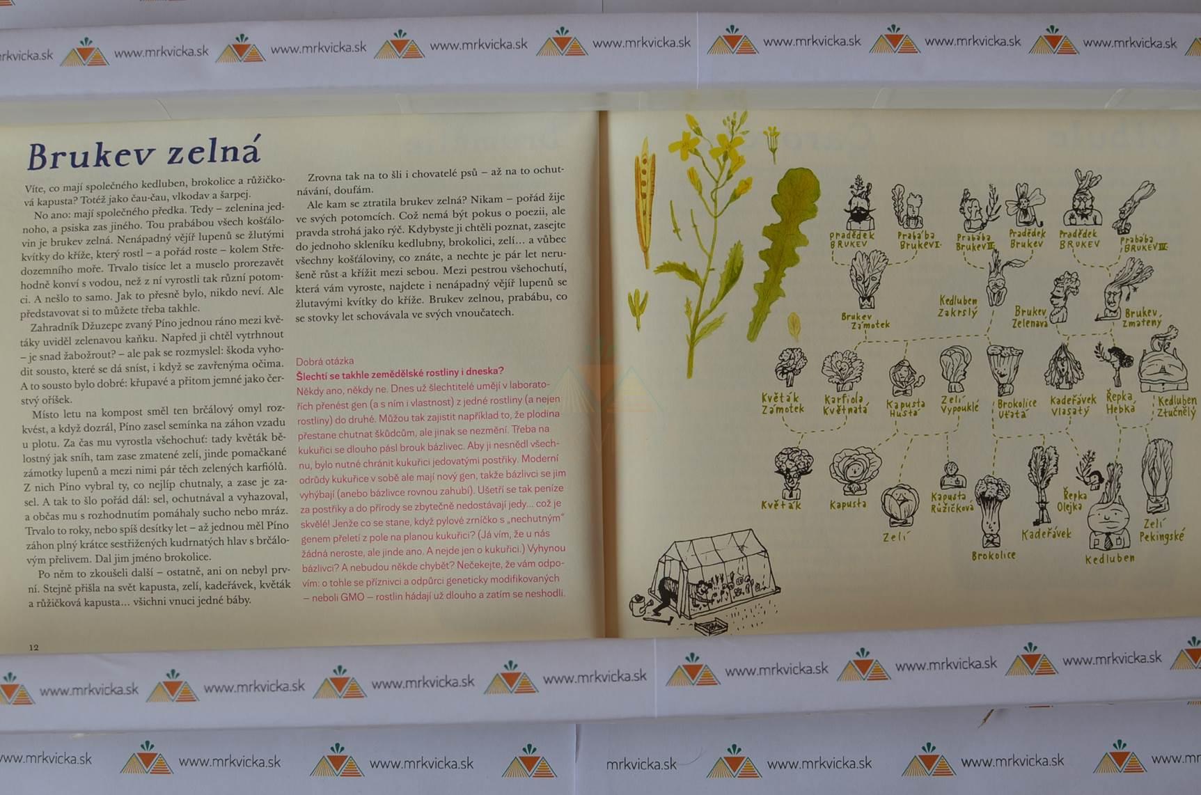 Rostlinopis aneb Podivuhodné pravdy a výmysly ze zeleného světa