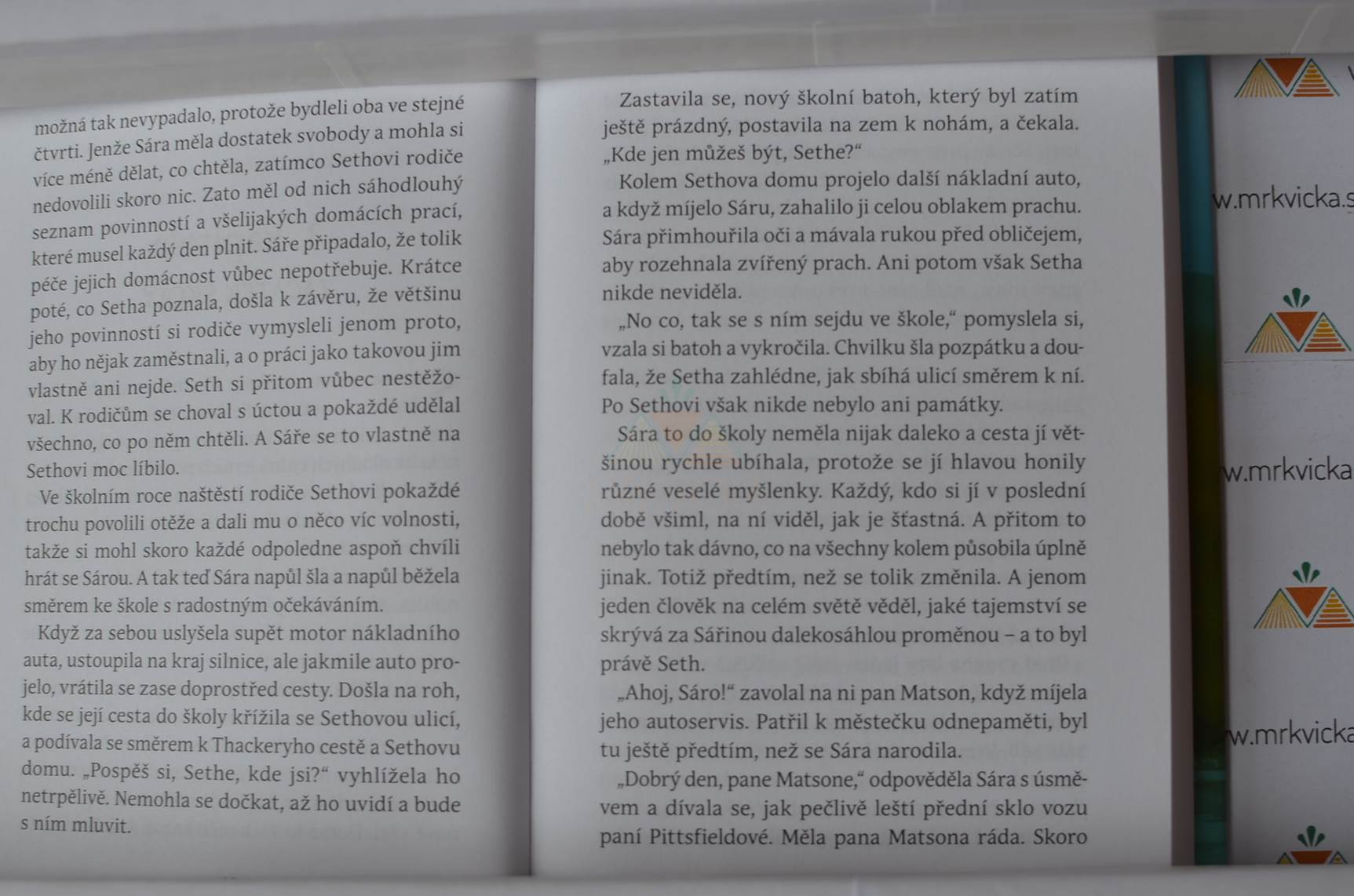 Sára. Kniha třetí - Mluvící sova je poklad