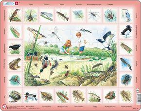Prírodoveda – Deti pri jazere, rybníku, sladkovodné živočíchy, ryby, vtáky, rastliny – Náučné obrázkové puzzle