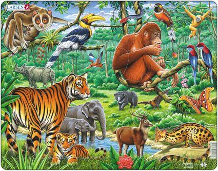 Zvieratá exotické – Džungľa, tropický dažďový prales v ázii, tigre, slony, opice, medveď, jeleň – Obrázkové puzzle