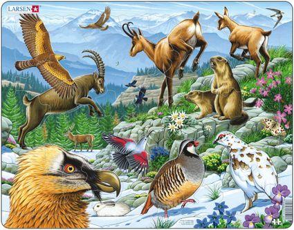 Zvieratá horské – Alpské hory, kamzíky, svište, horské kozy, orol – Obrázkové puzzle