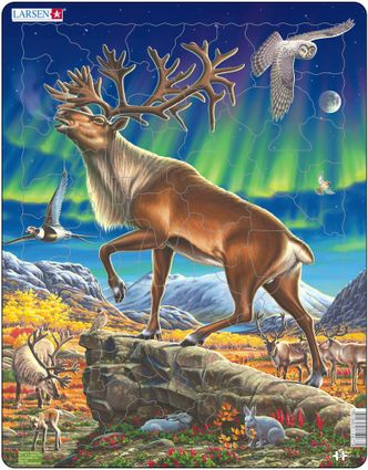 Zvieratá severské – Arktická krajina, severská tundra, soby v polárnej žiare, zajace – Obrázkové puzzle